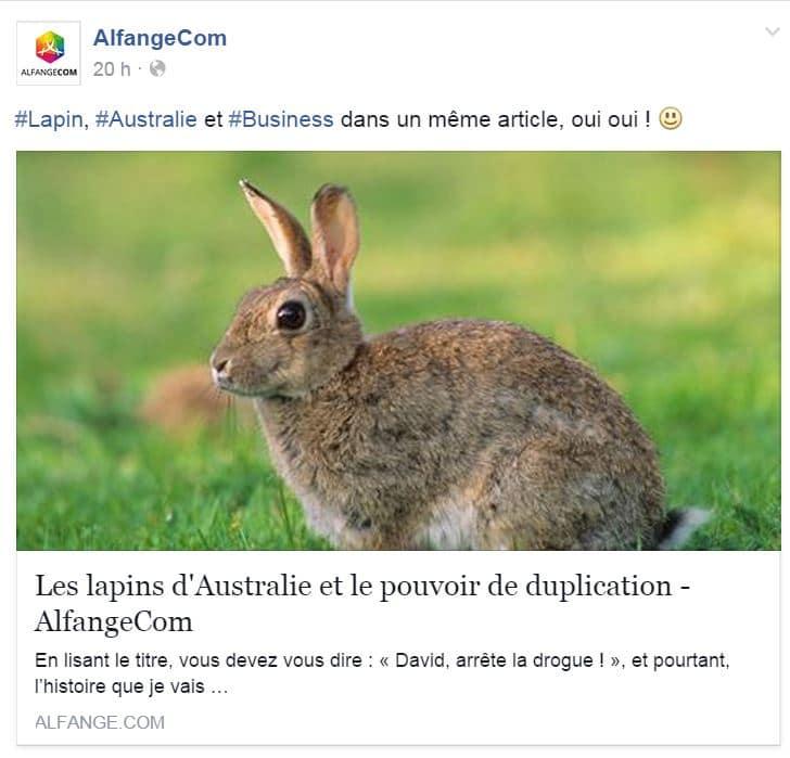 Lapins en Australie article